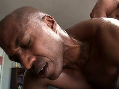 Huge hung black dudes are fucking hard in a hot gay porn fuck