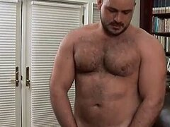 Bear Dreams Hairy Dick