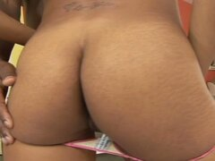 Horny anal lover babe fucked by a hard black cock