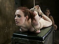 Young girl sucks a strapon then hogtied to get orgasms