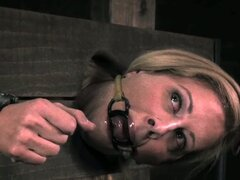 Dungeon humiliation with cherie deville
