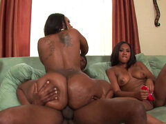 Curvy ebony stunners fuck their black pal