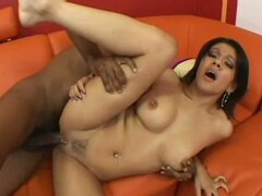 Latina slut Vanessa Leon begging to be banged by a big black dick