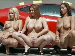 Busty babes with tight asses showing their honey pots by the car