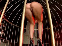 Blonde Cum Whore Fucked Inside A Big Bird Cage