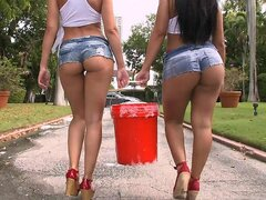 Big wet round asses are the best Tease