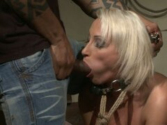 Dominated slut gets her mouth stuffed with hard cock