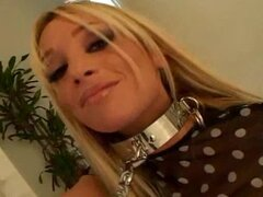 Hot blonde in collar and leash is a babe