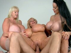 Horny milfs Echo Valley & Kayla Kleevage & Sofia Stacks