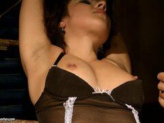 Brunette babe Patricia gets the old French toy on her mouth and sucks
