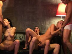 Naughty college coeds riding hard cocks and sucking others in a group setting