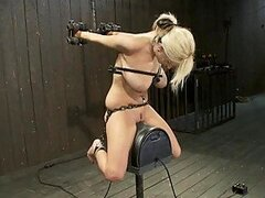 Blondie Screams For Punishment & Loves Every Bit