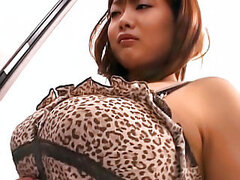 Asian gettin drilled