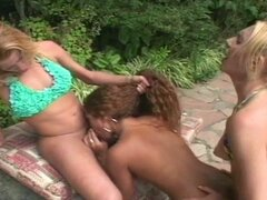 Threesome shemale action with sexy ebony babe